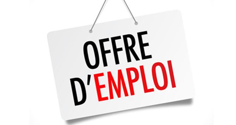 Offre d'emploi : Agent de développement (H/F) (CDI)